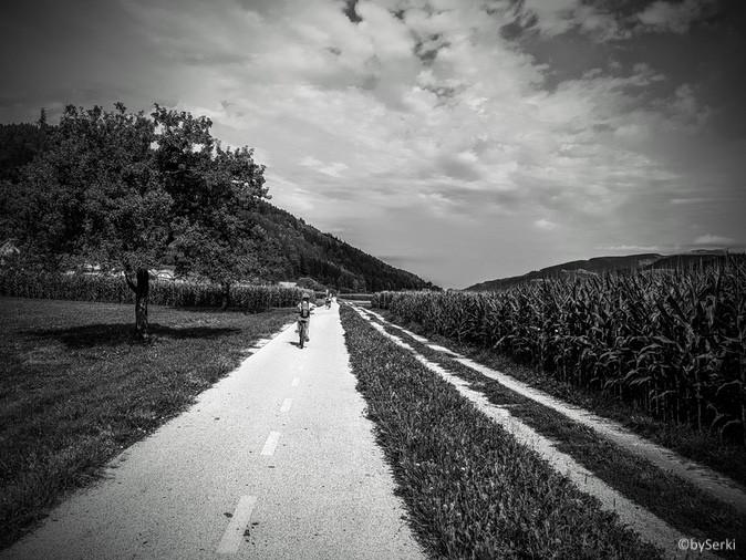 20170810-mtb-pohorje-serkezi_matjaz-016